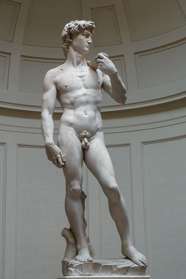Липоскульптура тела как способ обрести идеальную фигуру 2 - изображение, фото.